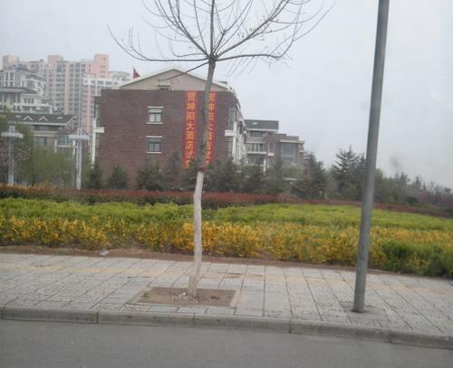 河南洛阳新区绿化带内公厕变商务酒店被曝光